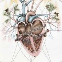 Painted image of anatomical heart with plant life growing out of the valves